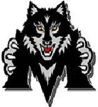 Madison Black Wolf